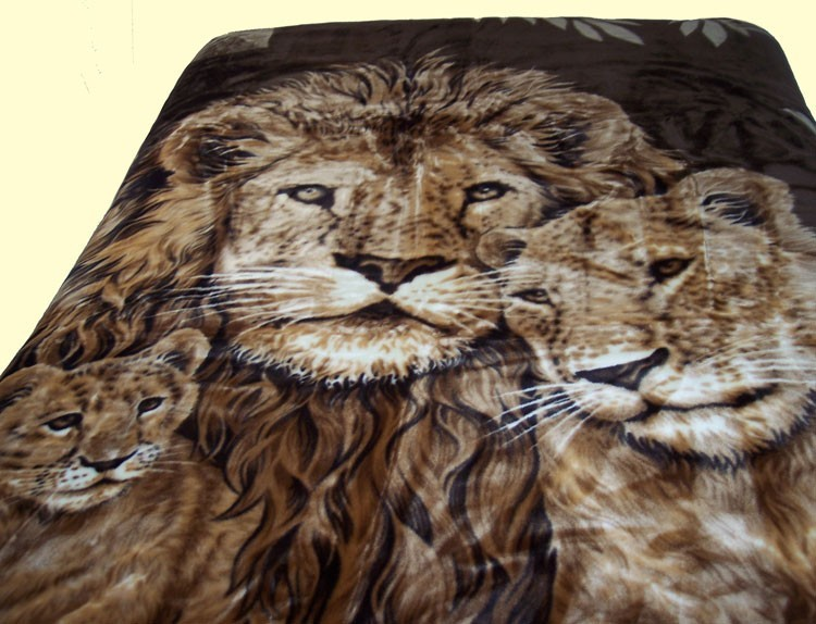 List Of Synonyms And Antonyms Of The Word Lion Blanket Awesome Lion Blanket Or Throw