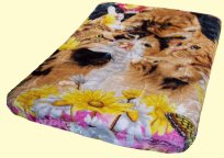 Luxury Queen Cats Mink Blanket