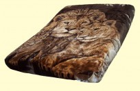 Solaron King Lions and Cub Mink Blanket