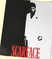 Twin/Full Scarface Mink Blanket
