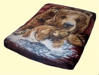 Luxury Signature Brown Bears Mink Blanket