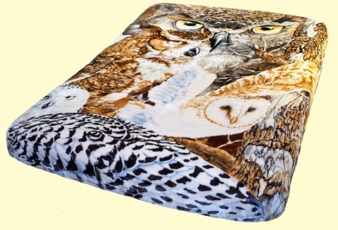 Luxury Queen Owls Mink Blanket